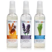 Air Fresheners Variety Pack
