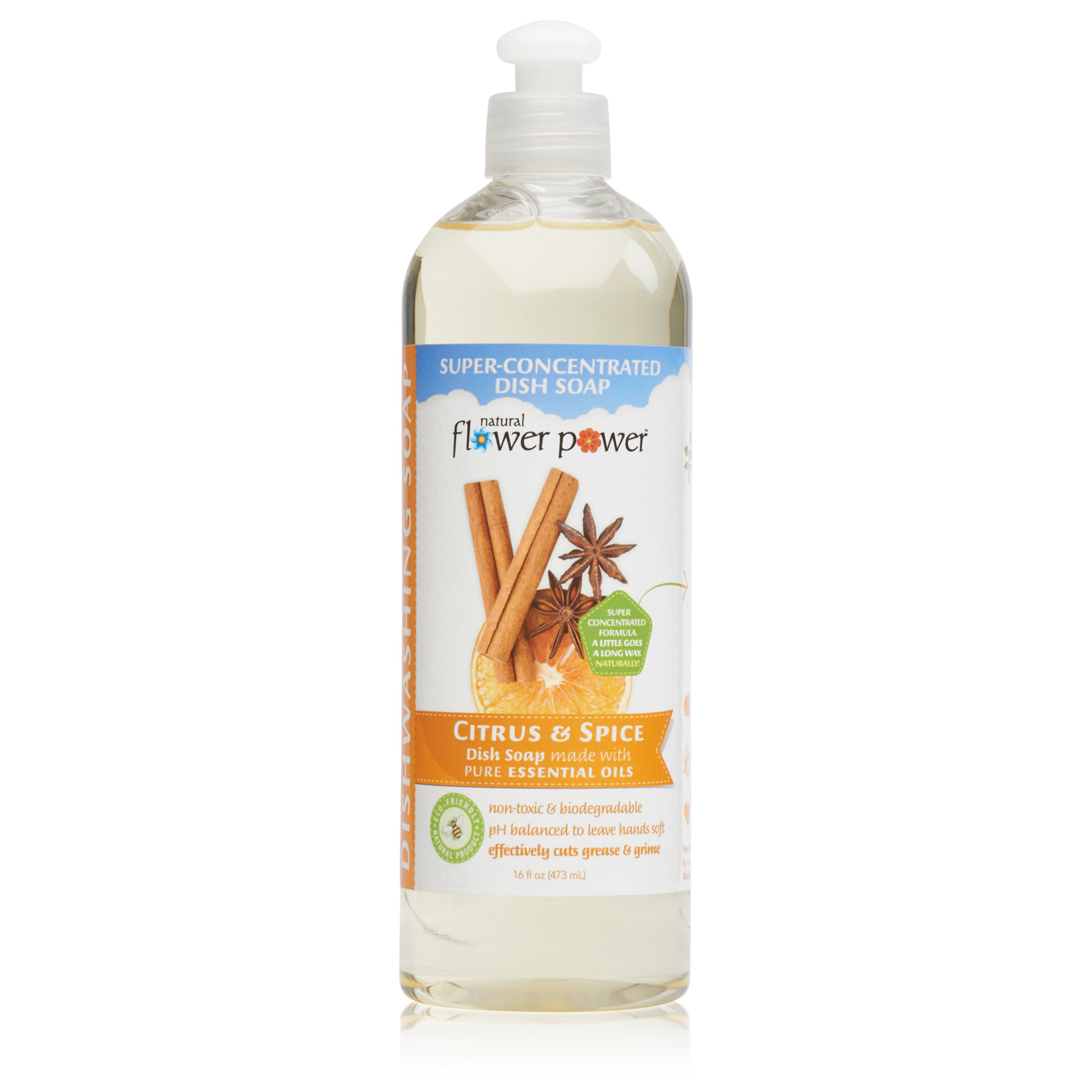 Natural Dish Soap Citrus & Spice – Front