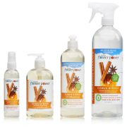 Home Cleaning Essentials Citrus & Spice